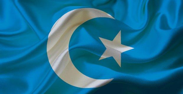 aksungurun_dogu_turkistan_izlenimleri_h13018661_83913